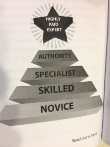 Highly Paid Pyramid